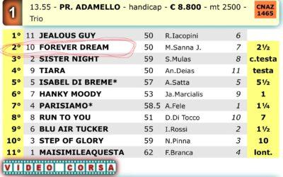Oggi a Milano un bel secondo posto per la figlia di Dream Hall e Benvenue !